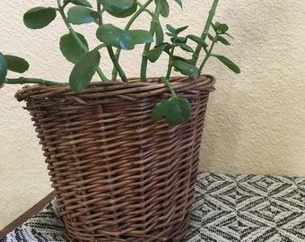 Medium basket planter