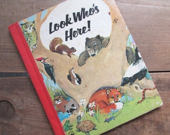 Look Who's Here Wonder Book Marguerite Walters Vintage Picture Book