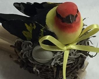Birdclip (#013)