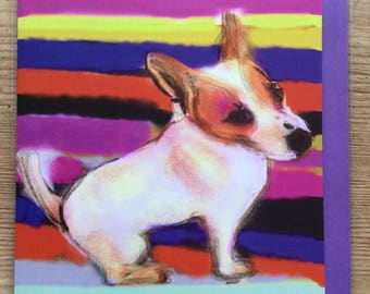Dotty, the Jack Russell