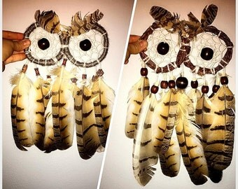 Owl with feather body
