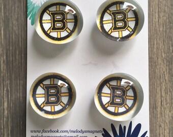 Bruins Magnets