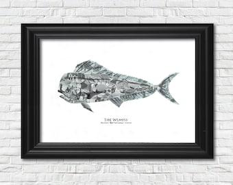 Fish Collage (11x17)