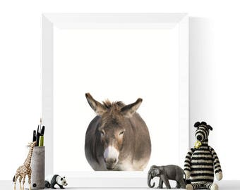 Donkey Prints | Donkey Photograph Printable | Nursery Decor | Animal Prints | Donkey Print | Animal Printable | Baby Room Art