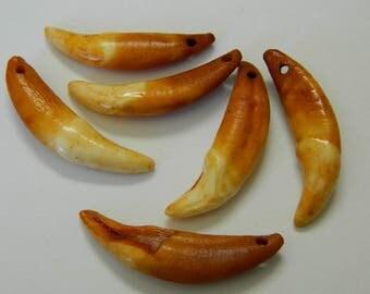 1 Wolf Tooth Amulet - Natural Authentic Wolf Teeth Amulet - Ferocity, Protection, Strength Amulet - Detash Emporium