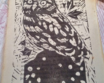 Little Owl lino print. Birds Animals.
