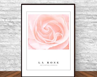 Rose Photography, Nursery Decor, Nature Print, Bedroom Decor, Pink and White Decor, Pastel Decor, Romantic Decor, Pink Rose