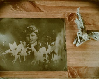"""The Cottingley Fairies. Original Tintype Collectors Item in Wetplate Collodion, 8"""" x 6""""."""