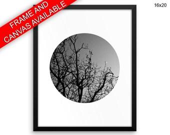 Dusk Canvas Art Trees Printed Dusk Photography Art Trees Photography Print Dusk Framed Art Trees Nature Circle Photo