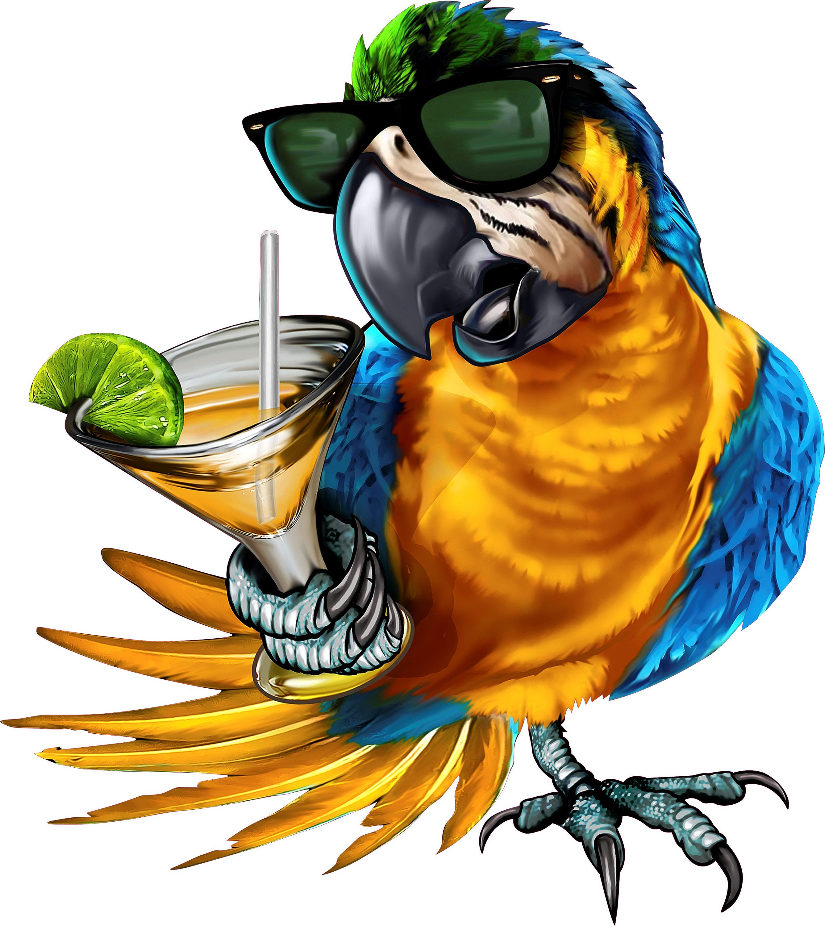 drinking parrot decal full color parrot with sunglasses clip art martini glass for birthday clip art martini glass for birthday