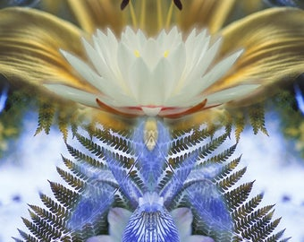 Fern Reflected in Water - Digital Manipulation - Art Print