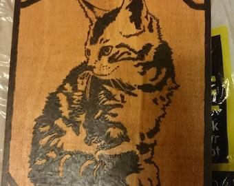 Pyrography Art - Kitten