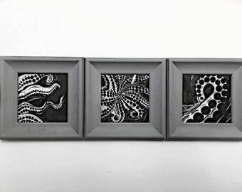 Octopus set of 3