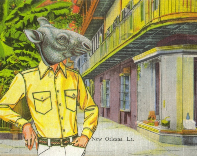 Prehistoric Creature Art Collage, Vintage New Orleans Postcard