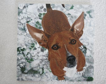 Pet Portrait 6 x 6 inch Ceramic Memorial Tiles Hand Painted and Made to Order by Shannon Ivins