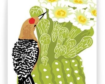 Gila Woodpecker and Saguaro: Box of 8 A2 folding blank cards