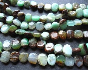 Bio Chrysoprase beads tabular smooth polished semiprecious stone - 10mm X 8mm
