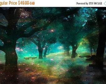 ON SALE 35% Landscape, Abstract Art, Modern Art,  Art Print, Home Wall Decor, Archival Fine Art Print, Trees, Home Decor, Gift, Giclee,
