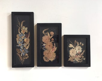 3 Bulgarian Botanical Compositions Encased in Glass Old Frame Vintage 60's Dried Pressed Flowers Folk Art