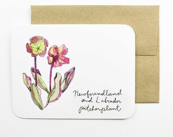 Newfoundland and Labrador | Pitcher Plant | Flowers of the Provinces and Territories card with envelope | Canadian flowers | Greeting Card