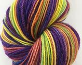 Handspun Yarn Sock Yarn 'Rainbow Palace' SW merino nylon 360 yds nply