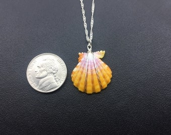 0098 Sunrise Shells Hawaii Necklace With 18 inch Sterling Silver Chain
