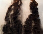 Beautiful Black Border Leicester Tiny Strands of Gray Throughout Washed/Separated Wool Locks for Primitive Doll Hair-1 full ounce