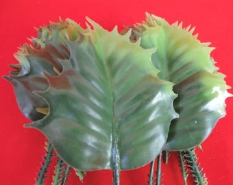 vintage holly berry leaves 1960's Christmas millinery / mixed media craft / gift decoration