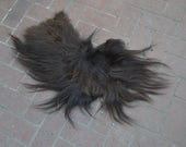 Rare Real Beautiful Large Musk Ox Pelt Fur Scrap Piece