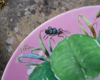 Antique hand painted decorative lily pad and insect plates