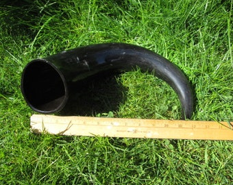 Viking Drinking Horn 16 oz