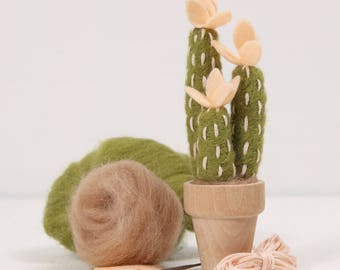 Needle Felting Kit // Peach Mojave // Needle Felting Kit, Cactus Craft, Desert DIY Craft Kit, Roving, Felting Kit, Cacti Kits, Benzie Design
