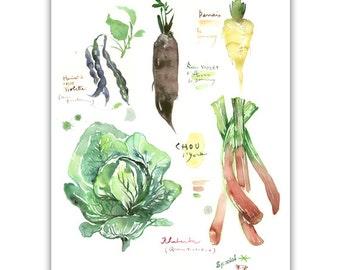 Green winter vegetables, Kitchen art print, Vegetable poster, Home decor, Food art, Seasonal print, Botanical Wall art, Watercolor painting