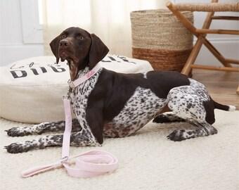 Personalized Seersucker Dog Leash by Mudpie®