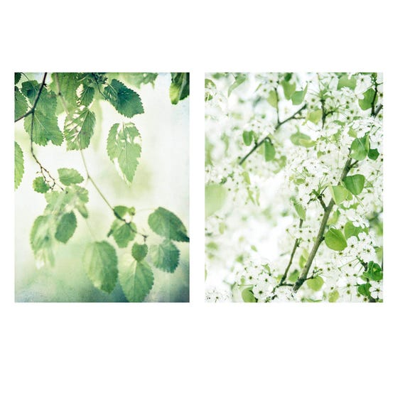 Art, Photos,  Print Set of 2, Wall Art, Photography, Spring Prints, Home Decor Prints, Pantone Color of the Year, Greenery