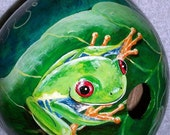 Custom Gourd Red Eyed Tree Frog