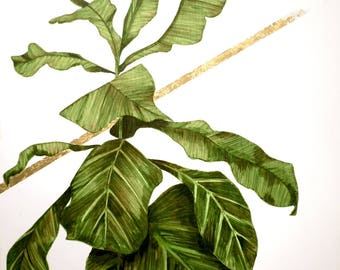 """Original Fiddle Leaf Fig contemporary art painting titled """"And&And"""" -  20"""" square acrylic on wood. Tropical Foliage Anthropologie Boho plant"""