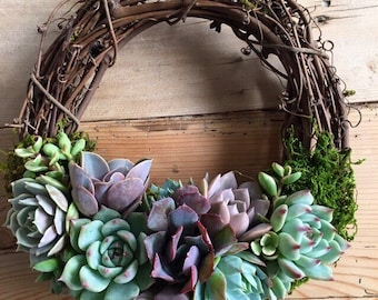 "Large 10"", grapevine trimmed with Shades of Lavender succulents wreath, Echeveria Wreath, garden wreath, wedding wreath, teacher's gift!"