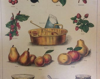 Vintage French School Poster by Deyrolle of Confiture/Jam