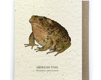 Toad Greeting Card - Plantable Seed Paper - Blank Inside