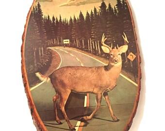 Vintage Deer Wall Art / Decoupage Plaque / Rustic Cabin Art