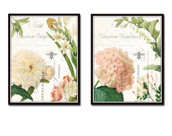 Spring Study French Collage Print Set No. 6 , Giclee, Art Prints, Wall Art,  Botanical Prints, Illustration, Flower Prints, Hydrangea, Peony