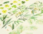 Leaves of Grass - Japanese Washi Masking Tape - 7.6 yard - 1 roll