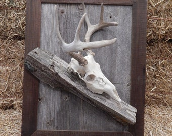 Deer Skull Barnwood/Fence Post Mounting Plaque