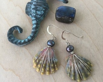 Moonrise Shell Earrings with Black Freshwater Pearls