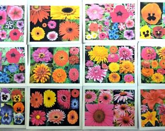Summer Blast of Flowers - Notecards