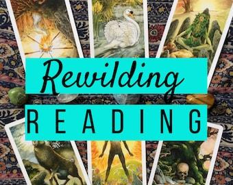 Rewilding Reading | The Wildwood Tarot