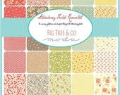 SALE Strawberry Fields Revisited Charm Pack by Fig Tree & Co. - One Charm Packs - 20260PP