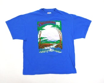 Oregon 1995 Odyssey of the Mind Blue Vintage Short Sleeve Cotton Tee T Shirt Top Hanes Beefy T Usa Made / Fits Mens Med or Womens Large
