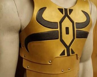 Leather Armor Cade Skywalker inspired chest & back